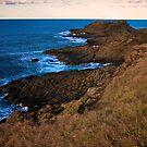 Windswept Headland by Ben Farrell