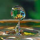 A drop of frog by neva2010