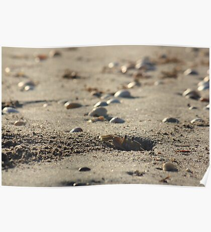 Morning Mr.Crab Poster