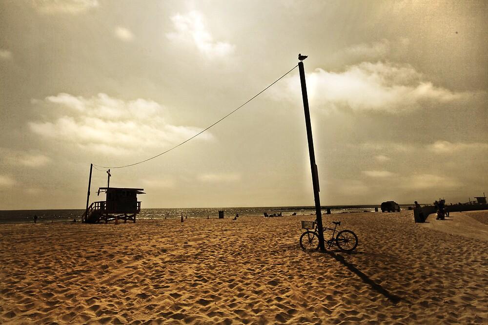 Venice bike by amybrookman