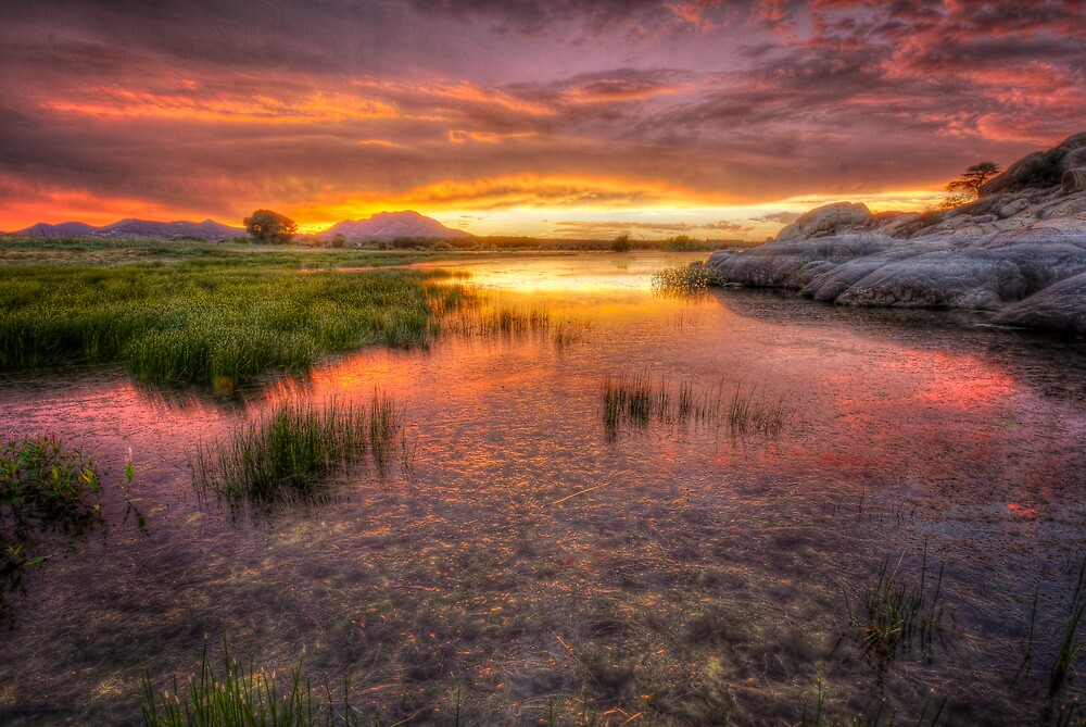 Colorful Muck by Bob Larson