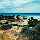 ON THE BEACH by vaggypar