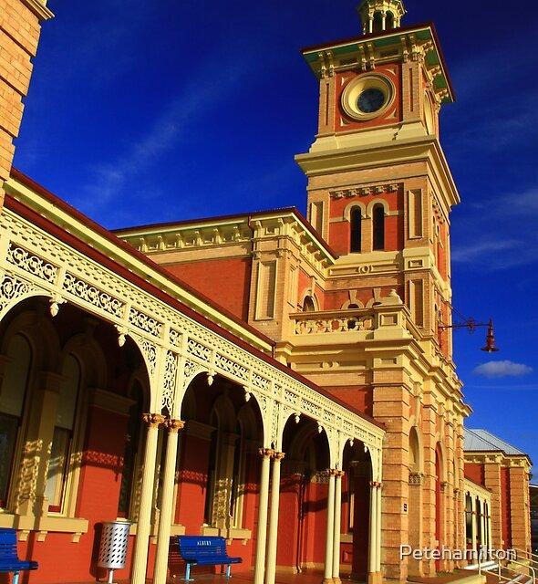 Albury Railway Station. by Petehamilton