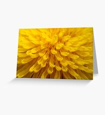Sunny D.  Greeting Card