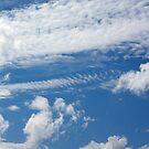 Fishbone Cloud by MarianaEwa