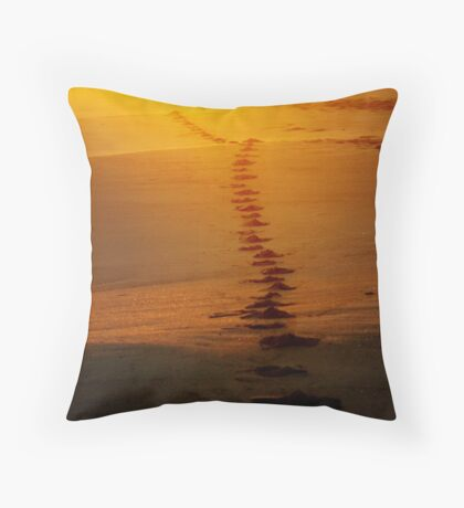 Into the sunrise... Throw Pillow