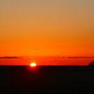 ~ Sunrise On The Prairie ~ by Madeline M  Allen