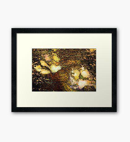 Paw Prints Gold Framed Print