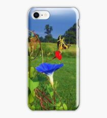 Swallowtails, Cyprus Vines, and Morning Glorys iPhone Case/Skin