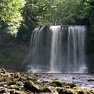 Sgwd yr Eira Waterfall in South Wales by Andy Coleman