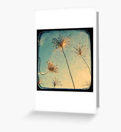 Reach for the Sky - TTV Greeting Card