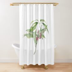 Star Anise Botanical Illustration Shower Curtain
