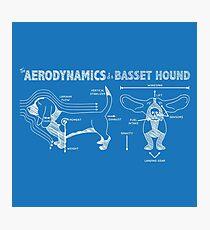 Lámina fotográfica La aerodinámica de un Basset Hound