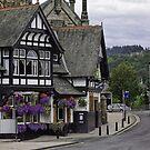 Bridge Inn by Lynne Morris