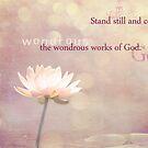 Wondrous Beauty by Kristen Coleman