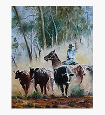 Outback Muster Photographic Print