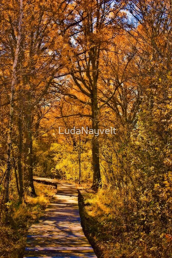 Golden fall by LudaNayvelt