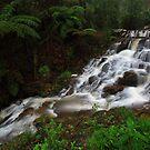 Myers Creek Falls by Donovan Wilson