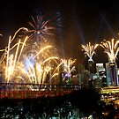 Youth Olympic Games 2010 Fireworks, Singapore by Tamara Travers