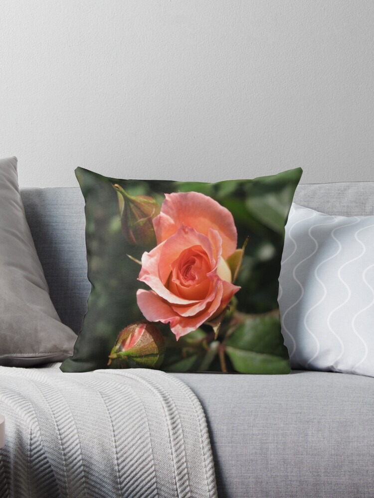 Orange Rose and Buds by Gordon Taylor