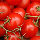 Red Tomatoes by KarenM