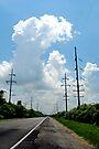 Electric Landscape by MarjorieB