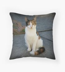 Audrey's Cat Throw Pillow