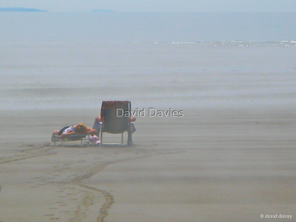 A Day at the Seaside by David Davies