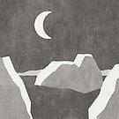 LANDSHAPES / Arktis - Nacht von Daniel Coulmann
