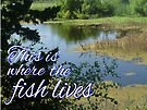 This is Where the Fish Lives by Margaret Bryant