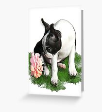Sweetpea Greeting Card