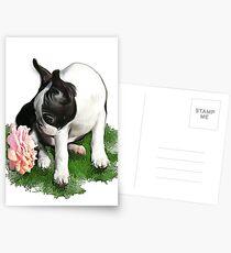 Sweetpea Postcards