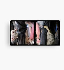 Click Go The Shears - TTV Diptych Canvas Print