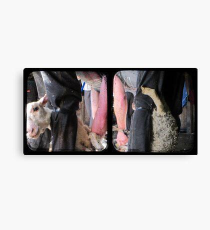 Click Go The Shears - TTV Diptych Canvas Print