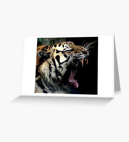 Big Cat Yawn Greeting Card