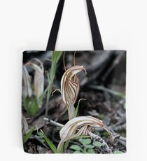 Long-tongued Shell Orchid (Diplodium dolichochilum - formerly Pterostylis dolichochila)  Tote Bag