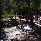 Bridge below Baring falls .  by Borror