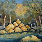 Water and rock by Mick Kupresanin