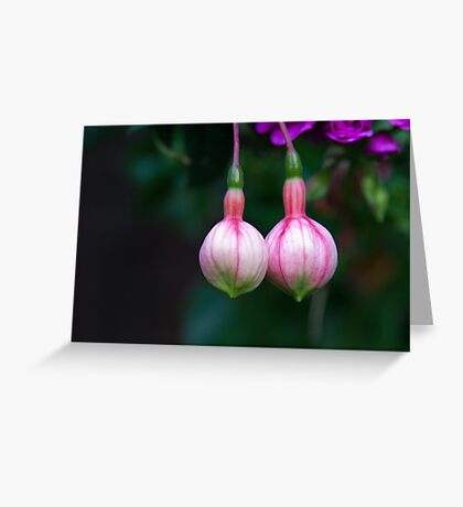Morning Delight Greeting Card