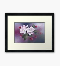 Pastel painting of Apple Blossoms Framed Print