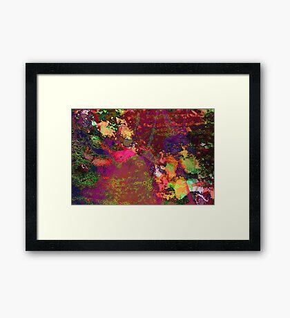 Paw Prints Paint Splash Framed Print