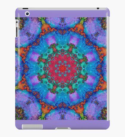 Barnie Paw Print Kaleidescope 3 iPad Case/Skin