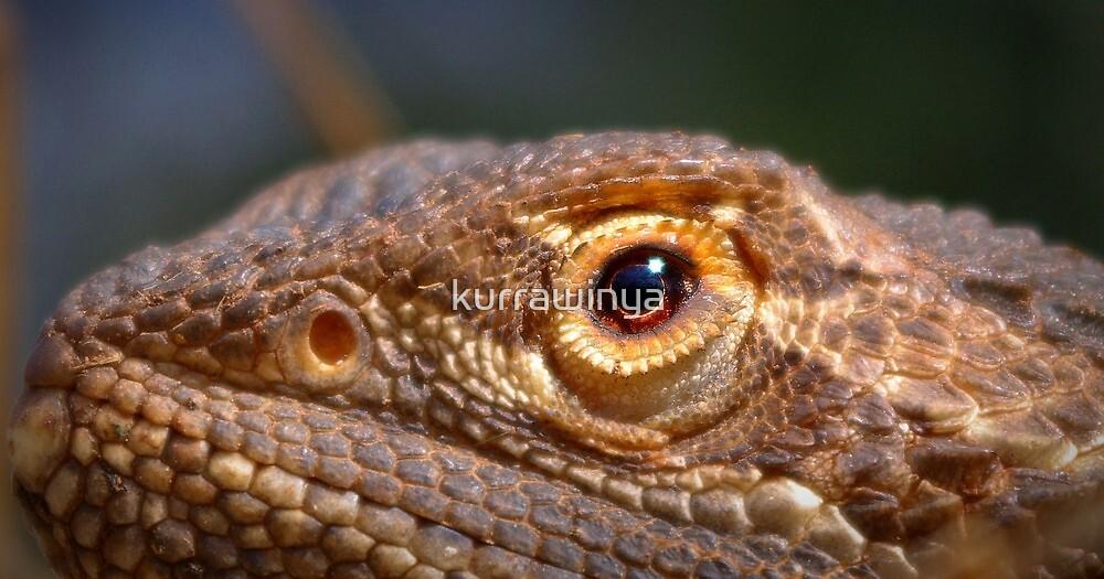 Dragon eye by Penny Kittel
