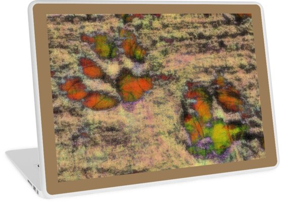 Paw Prints as Butterflies by Dorothy Berry-Lound