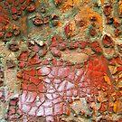 Fallen Petals by DebraLee Wiseberg