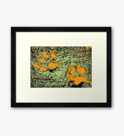 Paw Prints in Orange, Lime and Black Framed Print