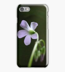 The Princess and her Court iPhone Case/Skin