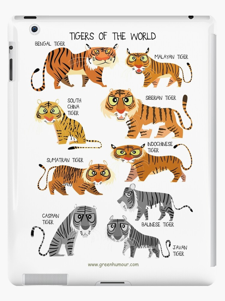 Tigers Of The World Ipad Case Skin By Rohanchak