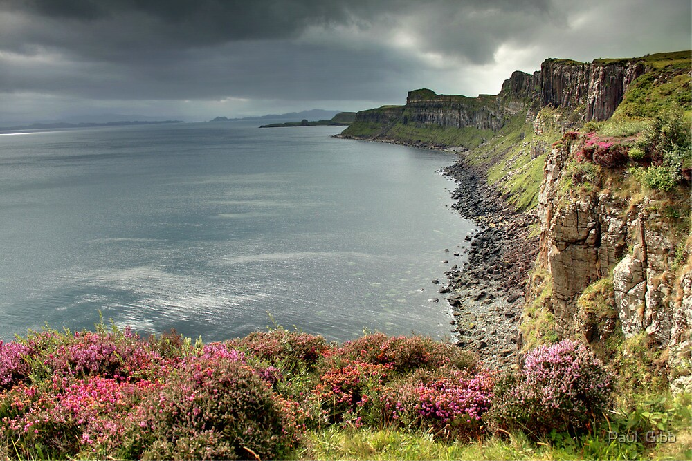 Looking Along the Coast by Paul  Gibb