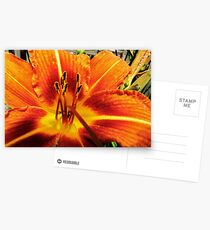 Day Lily For AndreaEL Postcards